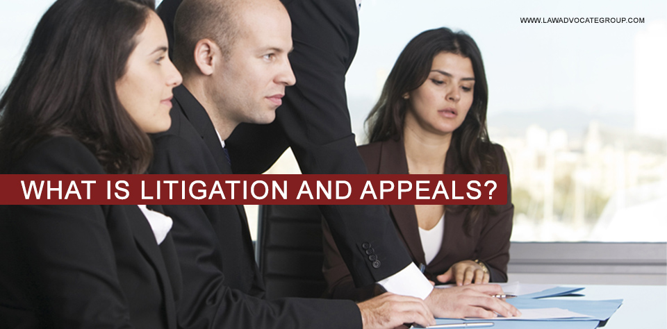 What Is Litigation And Appeals?