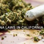 Marijuana Laws In California Image