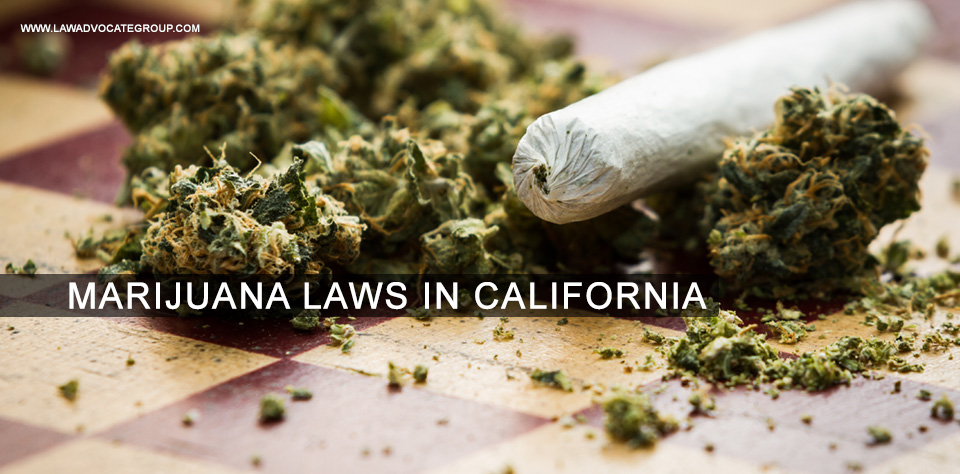 Marijuana Laws In California Image