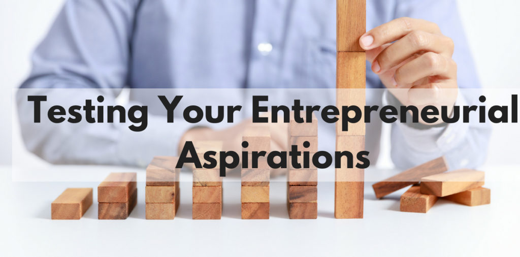 Testing Your Entrepreneurial Aspirations